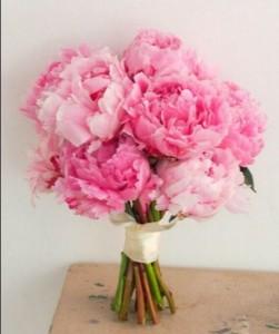 buket Bunga Carnations