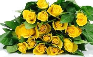 Bunga Mawar Kuning