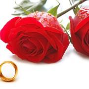 bunga-mawar-merah-dan-cincin