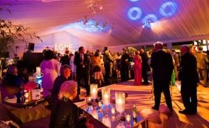 pesta-pernikahan-bagi-yang-berkarakter-leo