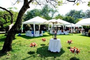 pesta-pernikahan-di-kebun