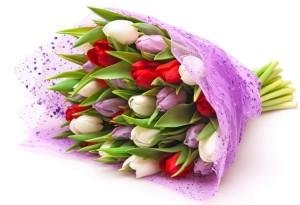 buket bunga tulips