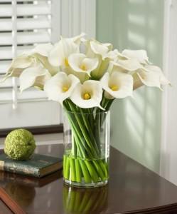 rangkaian bunga calla lili