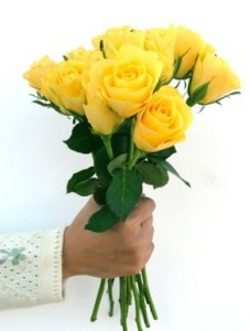 mawar-kuning