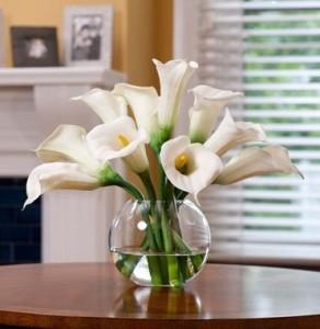 rangkaian-bunga-calla-lily