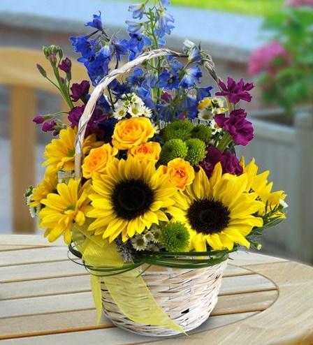 rangkaian-bunga-matahari1