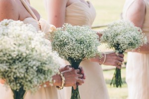 bunga-pernikahan-babys-breath