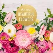 Bunga Tercantik