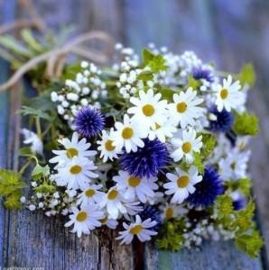 buket bunga daisy