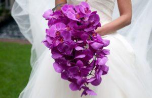 Bunga Anggrek Pernikahan