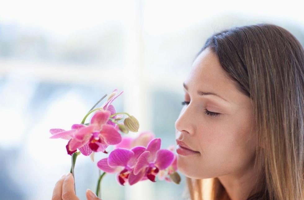 Wanita yang menyukai bunga anggrek