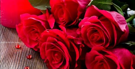 Bunga terfavorit di dunia