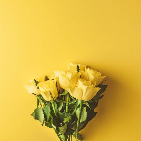 Bunga Mawar Kuning Lambang Persahabatan Tws Florist